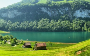 Picture grass, mountains, river, glade, Switzerland, houses, Switzerland, trees.