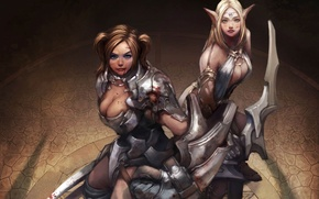 Picture weapons, girls, armor, fantasy, art, elf, ears, the view from the top