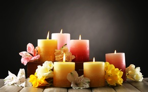 Picture flowers, candles, petals