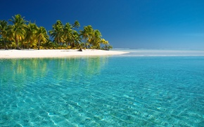 Picture sea, beach, palm trees, the Pacific ocean, cook Islands, water transparency, the island of Aitutaki