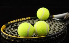 Wallpaper macro, balls, racket, tennis