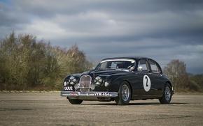 Picture road, auto, retro, Track, Jaguar.