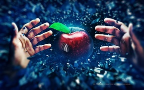 Picture Apple, Apple, Style, Hands, Bad, Seed, Seed