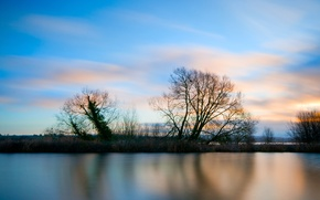 Picture the sky, grass, clouds, trees, sunset, lake, surface, blue, shore, The evening