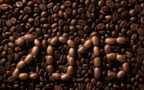 Picture background, beans, texture, 2015, coffee