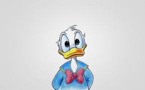 Picture blue, light background, duck, Walt Disney, Donald Duck, Donald Fauntleroy Duck