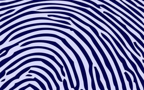 Picture white, blue, strip, print