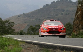 Picture Peugeot, Peugeot, WRC, 307, Rally, Rally