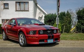 Picture Mustang, Ford, Special, California