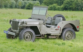 Picture grass, trees, jeep, SUV, green, the front, 1942, Willys, Willis