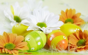 Picture flowers, eggs, Easter, Easter eggs