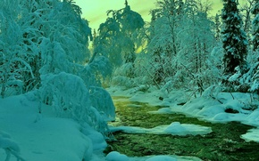 Picture winter, forest, the sky, snow, trees, sunset, river, stream