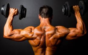 Picture tattoo, athlete, dumbbells, Bodybuilding
