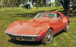 Picture auto, Corvette, Chevrolet, sports car, Chevrolet, Coupe, Corvette, 1968