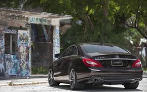 Picture CLS, Mercedes, 550