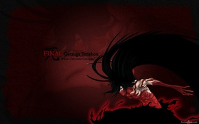 Picture anime, bleach, Ichigo, temporary Shinigami, the final getsuga tenshou