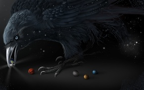 Picture bird, black, planet, beak, art, Raven