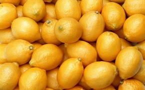 Picture food, fruit, fruit, lemons, citrus