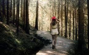Wallpaper forest, girl, walk