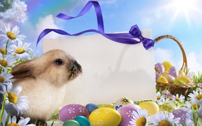 Picture the sky, eggs, Easter, Easter, Holidays