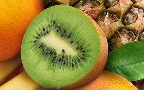Picture orange, kiwi, fruit, pineapple, banana, orange, banana, pineapple, kiwi, Fruits