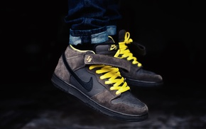 Picture sneakers, brand, Nike, Pro, Leviatation, Mid, Dunk