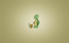 Picture turtle, snail, minimalism, leash, turtle, snail, walks