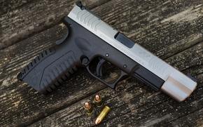 Picture gun, weapons, Springfield, semi-automatic, HDM