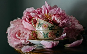 Picture flowers, style, petals, Cup, mugs, peonies