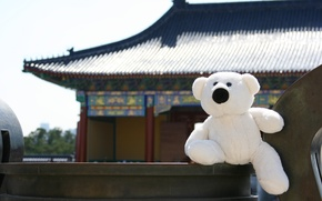 Picture background, stay, Wallpaper, mood, toy, White, bear, China, walk, journey, The Palace of the Emperor