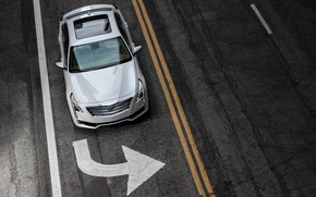 Picture road, markup, sign, Cadillac, 2016, CT6