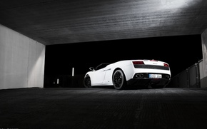 Picture Lamborghini, white, white, Gallardo, lambo, Lamborghini, 560-4