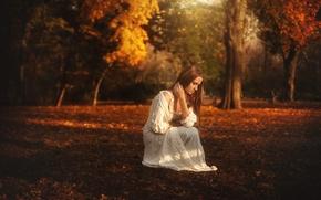 Picture autumn, girl, dress, TJ Drysdale