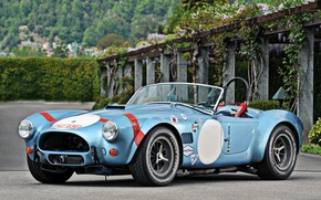 Picture HDR, Cobra, Roadster, car, ford, shelby, Ford, Shelby, cobra, wallpapers, roadster, 1964, сompetition