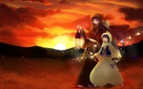 Picture sunset, lamp, guys, Sinbad, Aladdin magi, Magi: the labyrinth of magic, butterfly Rukh