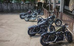 Picture bike, Street, classic, american, Harley-Davidson, Custom, Sportster, v-twin, Dyna