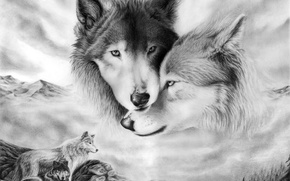 Wallpaper tenderness, look, pair, figure, love, wolves
