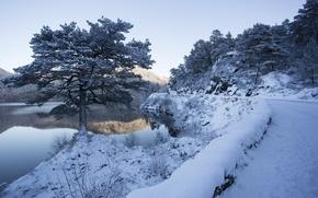 Picture winter, road, river