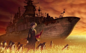 Picture grass, red, ship, the evening, penguins, flag, girl, Postapokalipsis, military