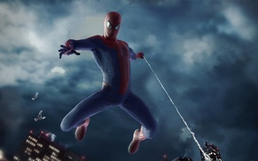 Picture birds, city, overcast, new york, fly, spider man