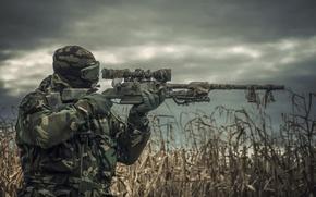 Picture green, wallpaper, gun, soldier, military, weapon, power, man, sniper, assassin, shooter, killer, rifle, warrior, corn, …