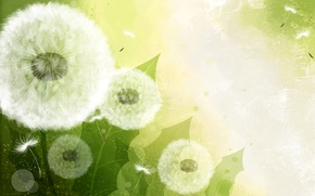 Picture nature, dandelion, vector, blade of grass