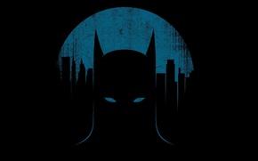 Picture Batman, Batman