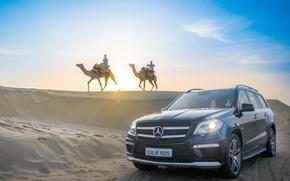Picture Mercedes-Benz, barkhan, camel, GL63 AMG