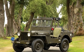 Picture Auto, jeep, willys, m38