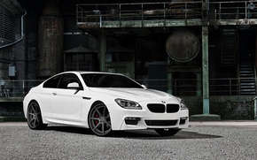 Picture white, BMW, BMW, drives, 6 series