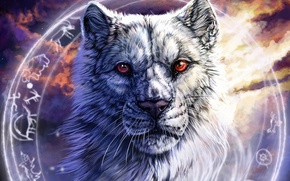 Picture face, wolf, round, characters, art, red eyes