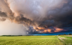Picture the storm, field, landscape, clouds, nature