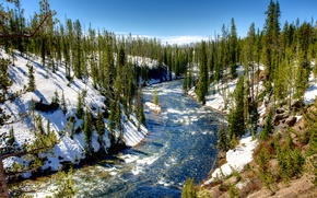 Picture winter, forest, the sky, clouds, snow, trees, river, USA, Yellowstone National Park