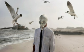 Picture birds, people, gas mask